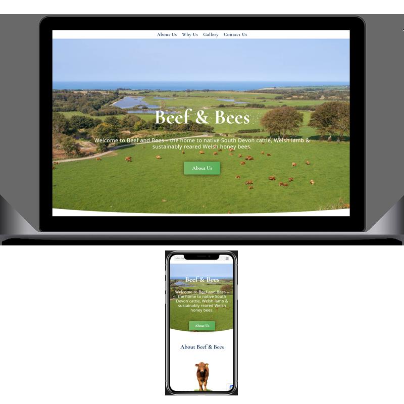 Website Development - Beef & Bees